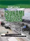 Image for Tsunami surges