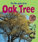 Image for The life cycle of an oak tree