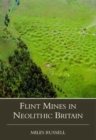 Image for Neolithic flint mines in Britain