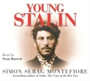 Image for Young Stalin