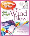 Image for I wonder why the wind blows and other questions about our planet
