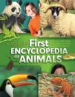 Image for Kingfisher first encyclopedia of animals