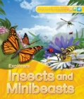 Image for Insects and minibeasts