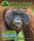 Image for Intelligent animals