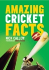 Image for Amazing cricket facts