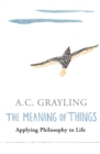 Image for The meaning of things  : applying philosophy to life