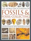 Image for The world encyclopedia of fossils and fossil-collecting