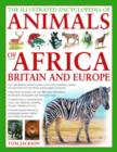 Image for Illustrated Encyclopedia of Animals of Africa, Britain and Europe