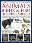 Image for The illustrated encyclopedia of animals, birds & fish of North America  : a natural history and identification guide with more than 420 native species from the United States of America and Canada