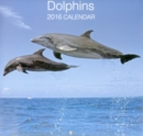 Image for Dolphins 2016 Calendar