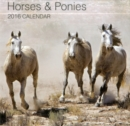 Image for Horses & Ponies 2016 Calendar