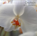 Image for Orchids 2016 Calendar