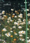 Image for Notebook (Field of Daisies)