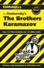Image for The Brothers Karamazov