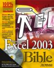 Image for Excel 2003 bible