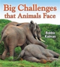 Image for Big challenges that animals face