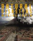 Image for Natural Disasters Moving Earth