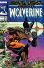 Image for Marvel Comics Presents : Wolverine : v. 1