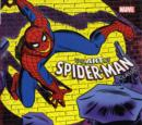 Image for Art of Spider-Man classic