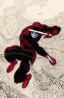 Image for DaredevilVol. 1