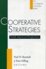 Image for Cooperative Strategies : North American Perspectives