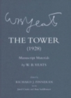 Image for The tower  : manuscript materials