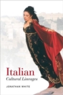 Image for Italian Cultural Lineages
