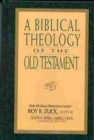 Image for A Biblical Theology of the Old Testament