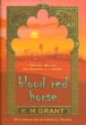 Image for Blood Red Horse