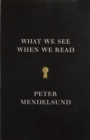 Image for What we see when we read  : a phenomenology with illustrations