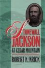 Image for Stonewall Jackson at Cedar Mountain