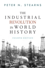 Image for The industrial revolution in world history