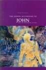 Image for The Gospel According to John and the Johannine Letters : Volume 4