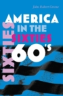 Image for America in the sixties