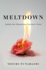 Image for Meltdown : Inside the Fukushima Nuclear Crisis