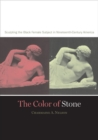 Image for The color of stone  : sculpting the Black female subject in nineteenth-century America