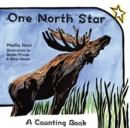 Image for One North Star  : a counting book