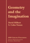 Image for Geometry and the Imagination