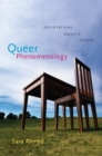 Image for Queer phenomenology  : orientations, objects, others