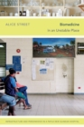 Image for Biomedicine in an unstable place  : infrastructure and personhood in a Papua New Guinean hospital