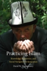 Image for Practicing Islam : Knowledge, Experience, and Social Navigation in Kyrgyzstan