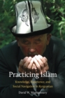 Image for Practicing Islam: Knowledge, Experience, and Social Navigation in Kyrgyzstan
