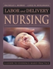 Image for Labor and delivery nursing: a guide to evidence-based practice