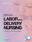 Image for Labor and Delivery Nursing : A Guide to Evidence-Based Practice
