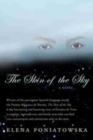 Image for Skin of the Sky : A Novel