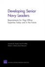 Image for Developing Senior Navy Leaders : Requirements for Flag Officer Expertise Today and in the Future