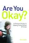 Image for Are you okay?: a practical guide to helping young victims of crime