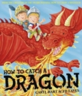 Image for How to catch a dragon