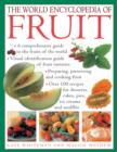 Image for The world encyclopedia of fruit