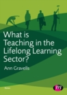 Image for What is teaching in the lifelong learning sector?